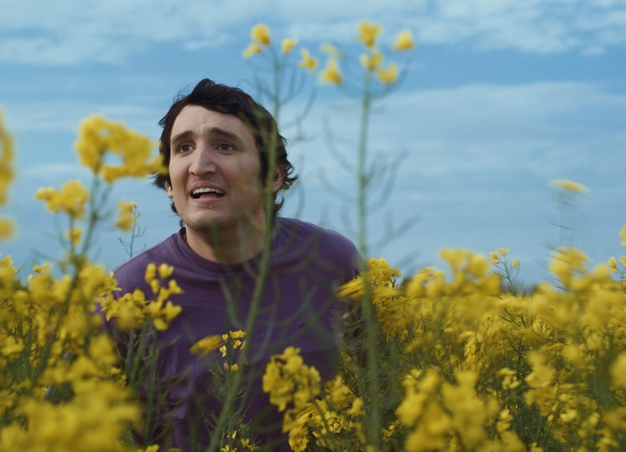 La felicit porta fortuna lo sguardo del cinema tedesco - La felicita porta fortuna ...